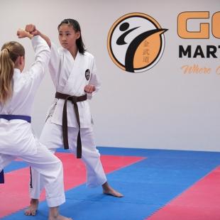 gold-martial-arts-perth-gallery4
