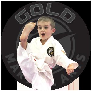 Martial Arts Governing Body Australia