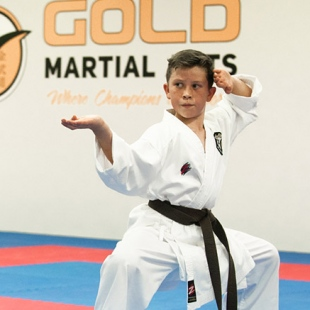 gold-martial-arts-perth-gallery1