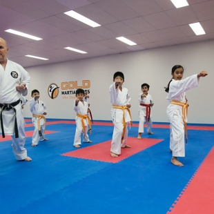 gold-martial-arts-perth-gallery2